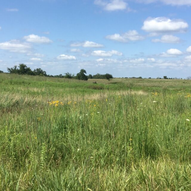 Biden's '30 by 30' conservation plan urges collaboration with private landowners