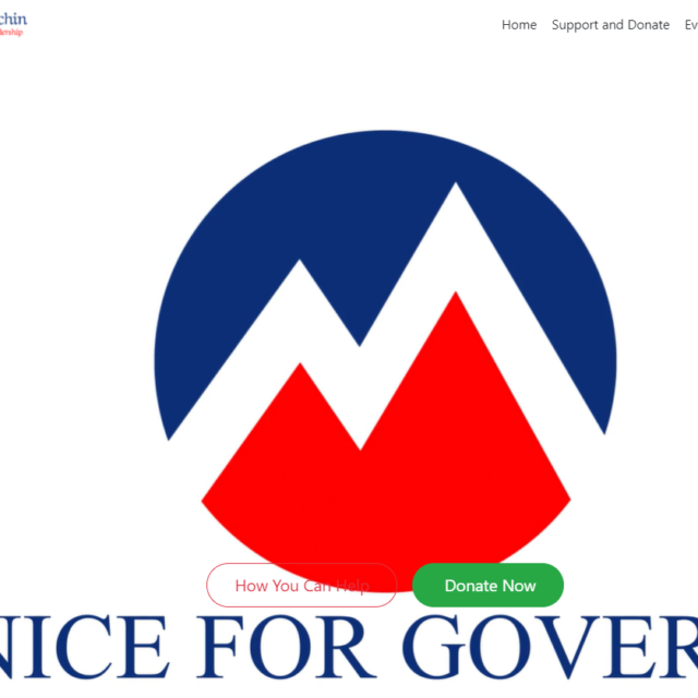 McGeachin campaign website, since taken down, says she's running for governor