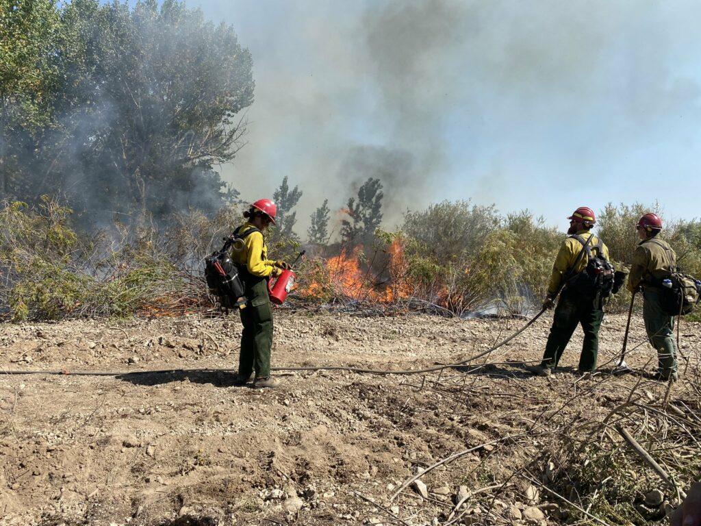 wildfire near Lake Lowell