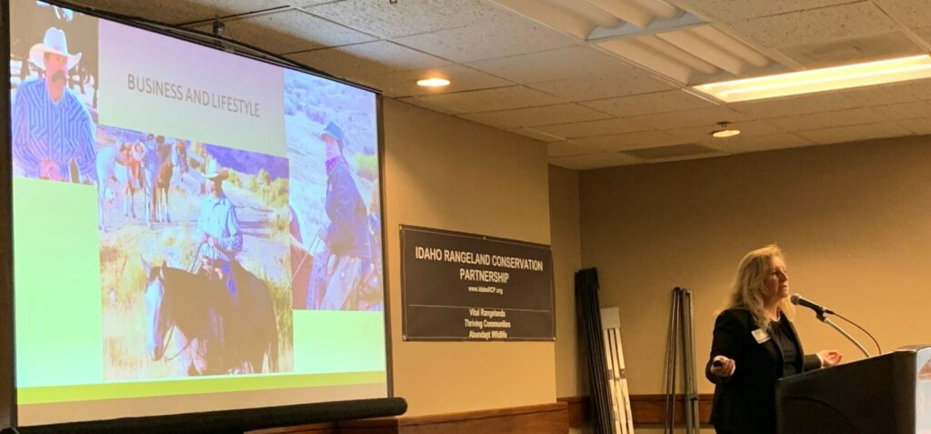 Photo of Brenda Richards, coordinator of the Idaho Rangeland Conservation Partnership, leading a discussion at a recent meeting