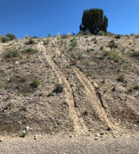 Photo of the ruts and erosion caused by UTVs or trucks going off designated trails