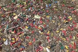 Photo of shell and bullet casings on the ground